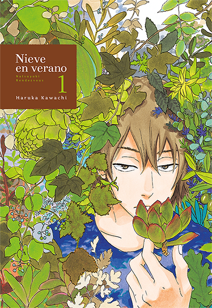 Natsuyuki Rendezvous reseña